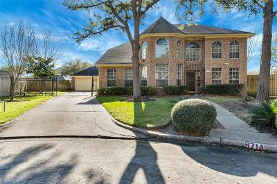 Sugar Land Single Family Home For Sale: 9714 Broadley Drive