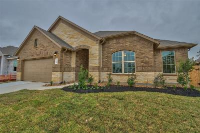Conroe Single Family Home For Sale: 14145 Emory Peak Court