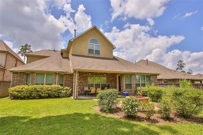 Tomball Single Family Home For Sale: 6 Caprice Bend Place