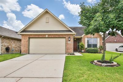 Spring Single Family Home For Sale: 21706 Owl Canyon Drive