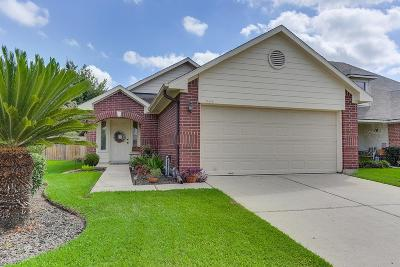 Tomball Single Family Home For Sale: 19418 Cavern Springs Drive