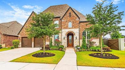 Fort Bend County Single Family Home For Sale: 1138 Goose Landing Lane