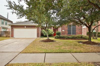 Tomball Single Family Home For Sale: 19415 Yuma Crest Lane