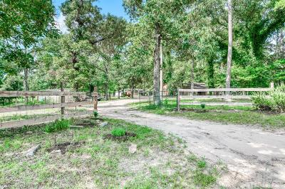 Grimes County Single Family Home For Sale: 16884 Pine Lane
