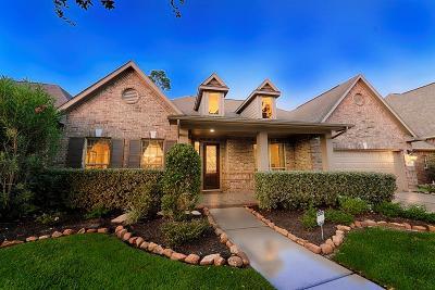 Spring Single Family Home For Sale: 18722 Duke Lake Drive