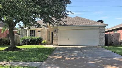 Katy Single Family Home For Sale: 20335 Decker Ridge Drive