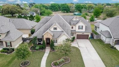 Katy Single Family Home For Sale: 27110 Ashford Sky Lane