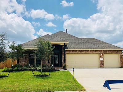 Tomball Single Family Home For Sale: 12527 Fort Isabella Drive