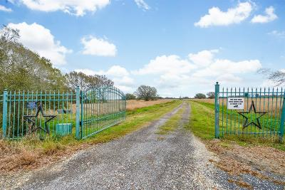 Fort Bend County Country Home/Acreage For Sale: 21211 Knolle Rd