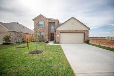 Galveston County Single Family Home For Sale: 614 Liberty Pines Lane