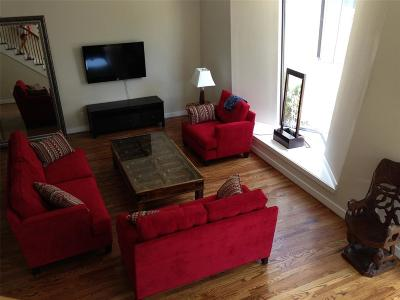 Houston Condo/Townhouse For Sale: 4608 Nett Street #F