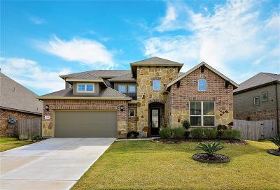 Rosharon Single Family Home For Sale: 13510 Noble Landing Lane