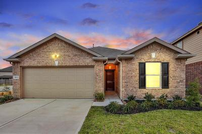 Katy Single Family Home For Sale: 18923 Barker Village