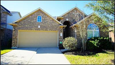 Katy Single Family Home For Sale: 9543 Ryans Ranch Lane