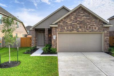 Single Family Home For Sale: 2222 Sanders Brook Drive