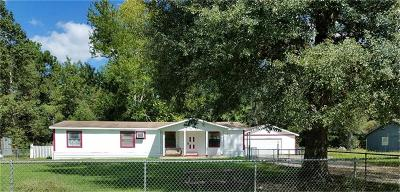New Caney Single Family Home For Sale: 21601 Morris Street