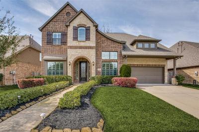 Missouri City Single Family Home For Sale: 15 Veneto Lane