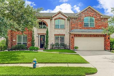 Pearland Single Family Home For Sale: 2904 Amber Hill Trail