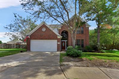 Katy Single Family Home For Sale: 20803 Figurine Court