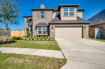 Katy Single Family Home For Sale: 22142 Grand Mist Drive