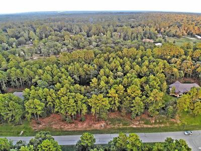 Willis Residential Lots & Land For Sale: 14804 Turquoise Trail Trail