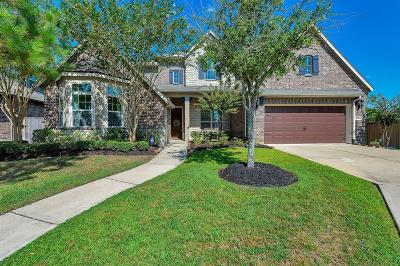 Katy Single Family Home For Sale: 10015 St Romain Drive