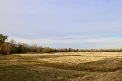 Grimes County Farm & Ranch For Sale: 3982 County Road 117