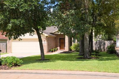 Montgomery Single Family Home For Sale: 3119 Fitzgerald