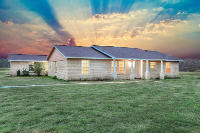Brazoria Single Family Home For Sale: 19104 County Road 520b