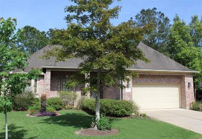Houston Single Family Home For Sale: 3526 Emerald Falls Court