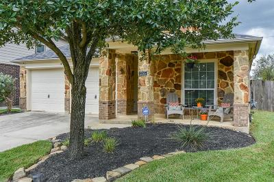 Tomball Single Family Home For Sale: 13306 Gladebeck Lane
