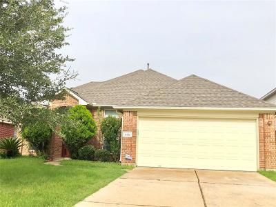 Houston Single Family Home For Sale: 11110 Heron Village Drive