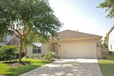 Pearland Single Family Home For Sale: 13417 Hickory Springs Lane