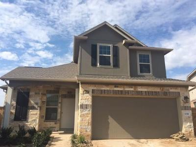 Fulshear Single Family Home For Sale: 30310 Blue Mist Bend
