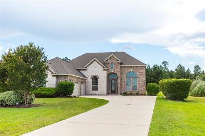 Montgomery Single Family Home For Sale: 18839 Quiet Water Way