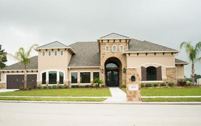 Pearland Single Family Home For Sale: 2451 Palmer Drive