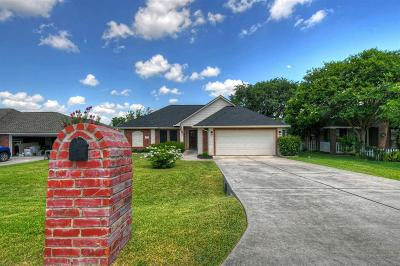 Montgomery Single Family Home For Sale: 343 Leisure Lane