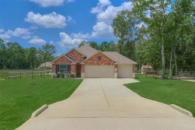 Conroe Single Family Home For Sale: 9134 Sierra Del Carmen