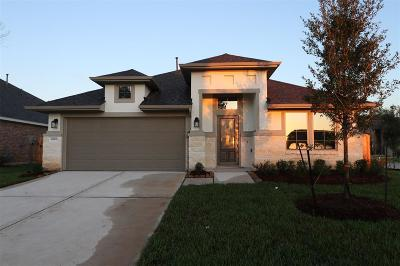 New Caney Single Family Home For Sale: 18902 Sorrento Point Drive