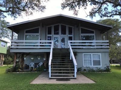 Brazoria Single Family Home For Sale: 4639 Cr 306a