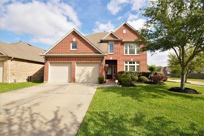 League City Single Family Home For Sale: 3114 Crystal Cascade Lane
