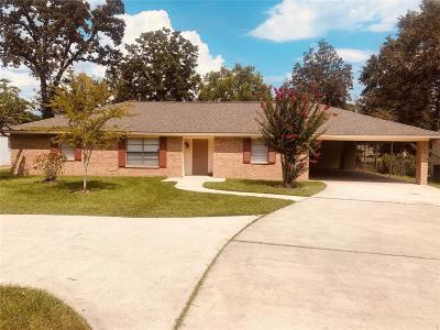 Houston Single Family Home For Sale: 1306 Burning Tree Road