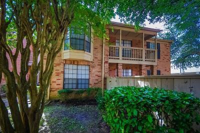 Houston Condo/Townhouse For Sale: 2255 Braeswood Park Drive #106