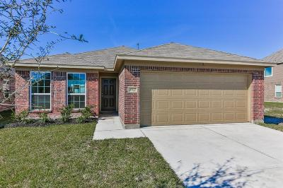 Houston Single Family Home For Sale: 3527 Barkers Run Drive