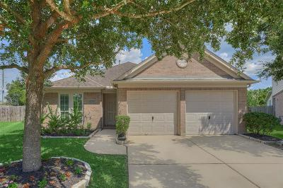 Tomball Single Family Home For Sale: 18910 Bluestone Hollow Lane