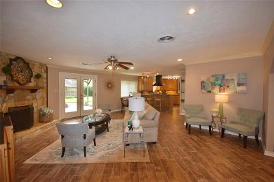 Houston Single Family Home For Sale: 10519 Londonderry Drive