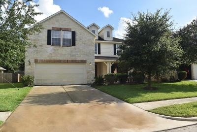 Tomball Single Family Home For Sale: 11407 Maple Falls Drive