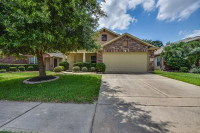 Tomball Single Family Home For Sale: 19003 Wellock Lane