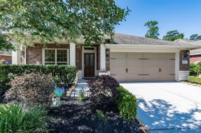 Houston Single Family Home For Sale: 12814 Bridle Springs Lane