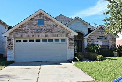 Houston Single Family Home For Sale: 9931 Park Place Drive